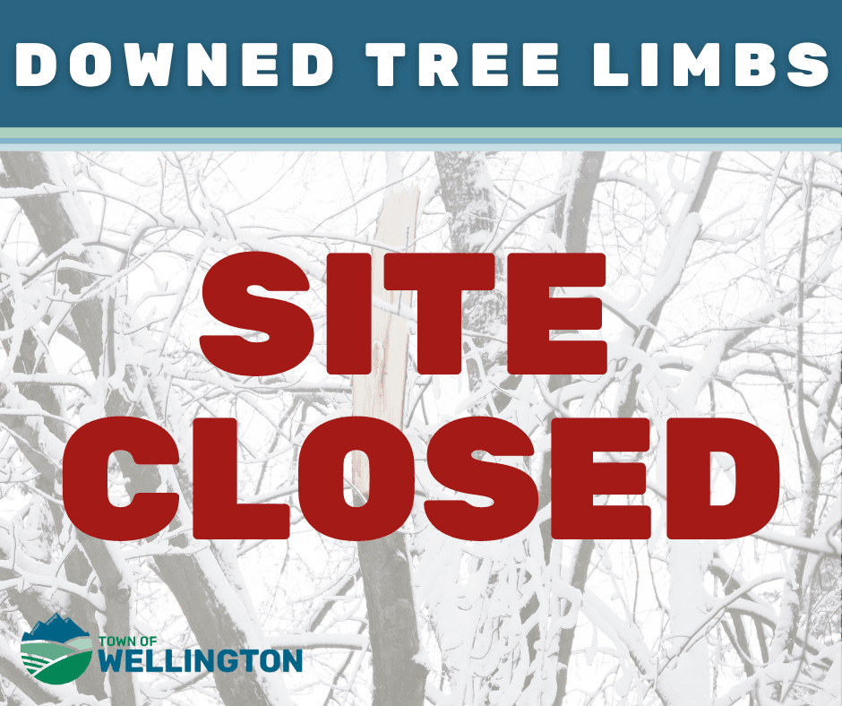 Tree Limb Site Closed